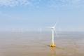 wind farm on coastal mudflat wetland - PhotoDune Item for Sale