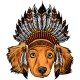 Head Dog with Traditional Indian Hat Vector - GraphicRiver Item for Sale