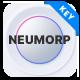 Neumorph - Neumorphic Corporate Business Keynote Presentation Template - GraphicRiver Item for Sale