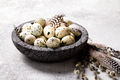 Easter holiday concept.Quail eggs in a plate - PhotoDune Item for Sale