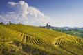 Langhe vineyards panorama, Serralunga Alba, Piedmont, Italy Europe. - PhotoDune Item for Sale