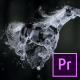 Splashing Horse Logo Reveal - Premiere Pro - VideoHive Item for Sale