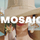 Mosaic Fast Intro - VideoHive Item for Sale