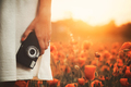 Vintage camera in woman hand on poppy field - PhotoDune Item for Sale