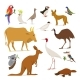 Big Set of Birds and Animals of Australia - GraphicRiver Item for Sale