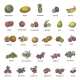 Vector Big Set Different Colored Juicy Ripe Fruit - GraphicRiver Item for Sale