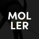 Moller - Furniture & Decor WooCommerce WordPress Theme - ThemeForest Item for Sale