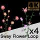 Sway Flower Loop - VideoHive Item for Sale