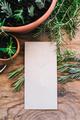 Plant cuttings - PhotoDune Item for Sale