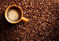 Roasted coffee beans and cup - PhotoDune Item for Sale