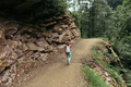 Back view of a woman with a backpack walking along a forest trail in a mountain forest reserve. - PhotoDune Item for Sale