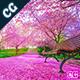 Spring Lightroom Presets - 15 Premium Lightroom Presets - GraphicRiver Item for Sale