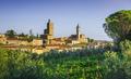 Vinci, Leonardo birthplace, village skyline, vineyards and olive trees. Florence, Tuscany Italy - PhotoDune Item for Sale