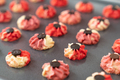 Chinese New Year butter cookies - PhotoDune Item for Sale