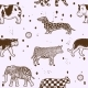 Large Set Animals of Atypical Coat Color - GraphicRiver Item for Sale