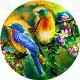 Birds - AudioJungle Item for Sale