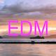 Summer EDM Festival