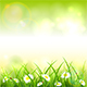 Green Spring or Summer Nature Background - GraphicRiver Item for Sale