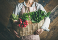 Woman farmer holding basket of fresh vegetables and greens - PhotoDune Item for Sale