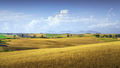 Tuscany countryside panorama, rolling hills and green fields. Pisa, Italy - PhotoDune Item for Sale