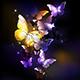 Fabulous Purple Butterflies - GraphicRiver Item for Sale