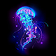 Large Glowing Jellyfish - GraphicRiver Item for Sale