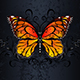 Monarch Butterfly on Gothic Background - GraphicRiver Item for Sale