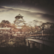 Autumn In Osaka - Japanese Lofi