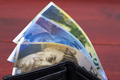 Swiss money in the wallet - PhotoDune Item for Sale