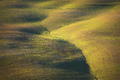 Tuscany abstract landscape, rolling hills in the morning. Italy - PhotoDune Item for Sale