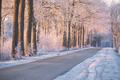 red sunrise light durinf winter morning - PhotoDune Item for Sale