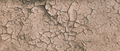 Background Of Brown Dry Cracked Soil Dirt Or Earth During Drought. Dry Cracked Earth Depicting - PhotoDune Item for Sale