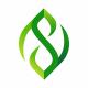 Leaf - GraphicRiver Item for Sale