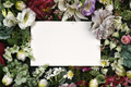 Greeting floral card template - PhotoDune Item for Sale