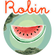 Robin - Cute & Colorful Blog Theme - ThemeForest Item for Sale