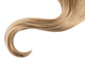 Curl hair isolated on white - PhotoDune Item for Sale