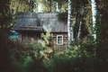 An old wooden house in a wood - PhotoDune Item for Sale