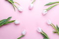 Tulips on pink background - PhotoDune Item for Sale