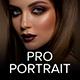 Professional Portrait Lightroom Desktop And Mobile Presets - GraphicRiver Item for Sale