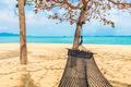 Empty hammock swing around beach sea ocean with white cloud blue sky - PhotoDune Item for Sale