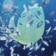 Ocean/ Blue Sea Eco Fish Logo - VideoHive Item for Sale