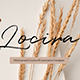 Locira - Google Slides Template - GraphicRiver Item for Sale