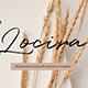 Locira - Keynote Presentation Template - GraphicRiver Item for Sale