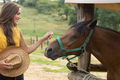 Girl Caressing the Brown Horse in a Stable - PhotoDune Item for Sale