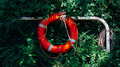 Red Lifebuoy Hanging on Grass Wall - PhotoDune Item for Sale