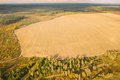 Aerial View Plantation With Young Green Forest Area Near Rural Field Landscape. Top View Of New - PhotoDune Item for Sale
