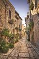 Spello picturesque street and plants. Perugia, Umbria, Italy. - PhotoDune Item for Sale