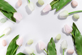 Beautiful pastel white tulip and easter eggs on white background ,Happy easter - PhotoDune Item for Sale