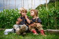 Portrait of two small children in vegetable garden, sustainable lifestyle - PhotoDune Item for Sale
