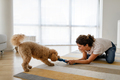 Beautiful happy woman playing with a nice cute dog at home - PhotoDune Item for Sale